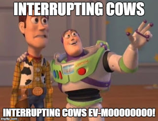 interrupting cow.jpg