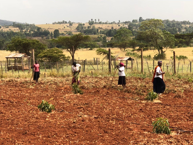 women on toby farm.jpg