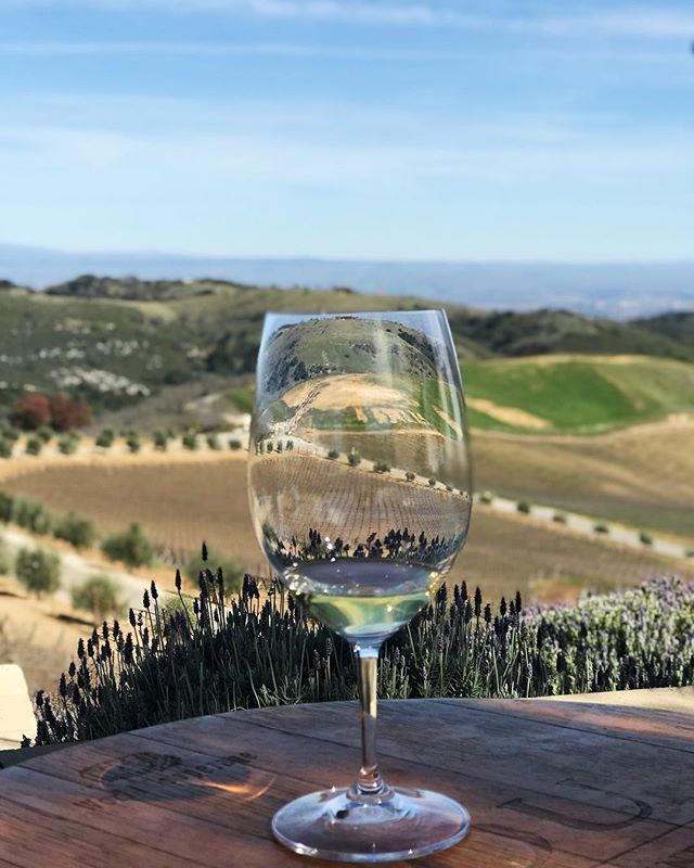 The Daou Mountain is breathtaking and the wine a pure expression of the terroir. 🍇 #sfwinesociety