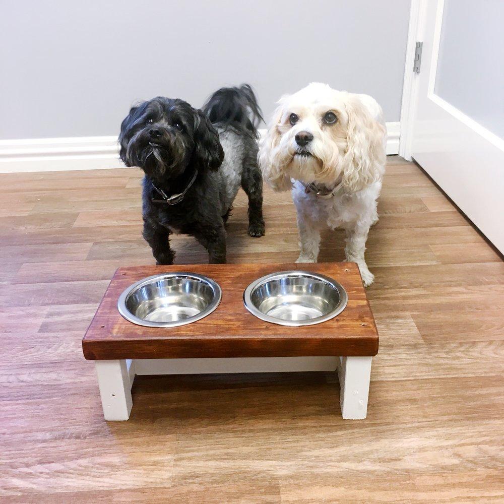Diy Dog Bowl Feeder Jeffcityblog Com