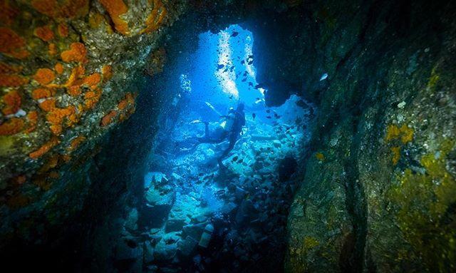 brb - gone diving ✨