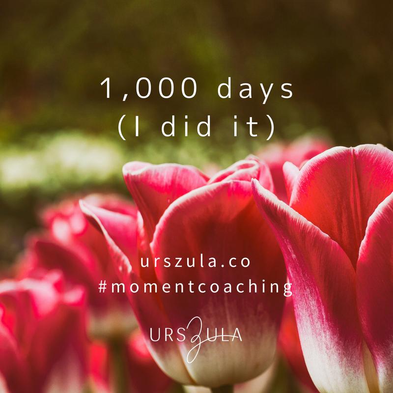 What I learned from 1,000 days of meditation - Urszula Lipsztajn