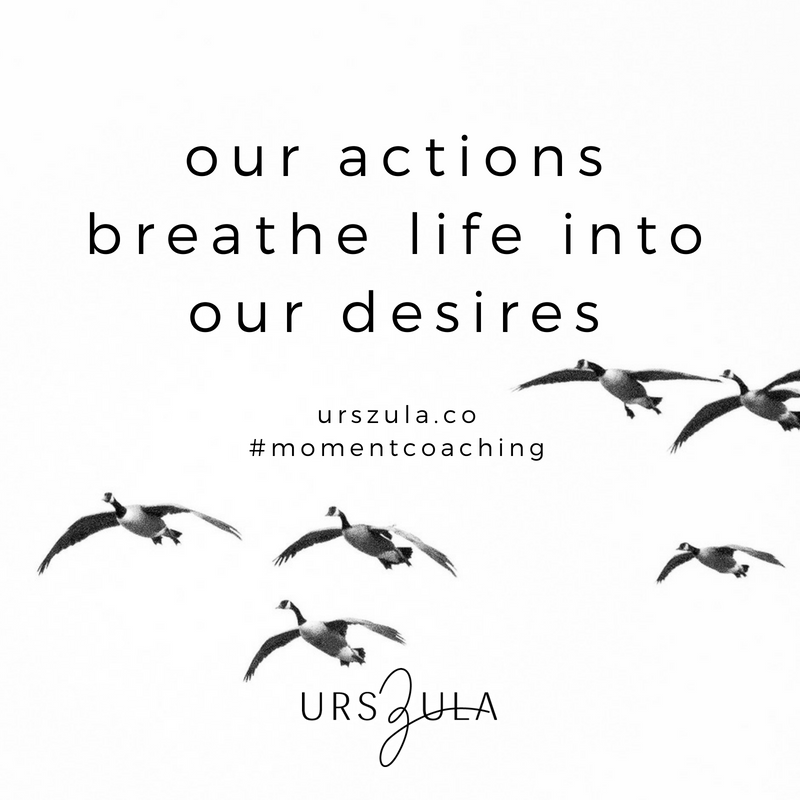 Actions - Moment Coaching - Urszula Lipsztajn.png