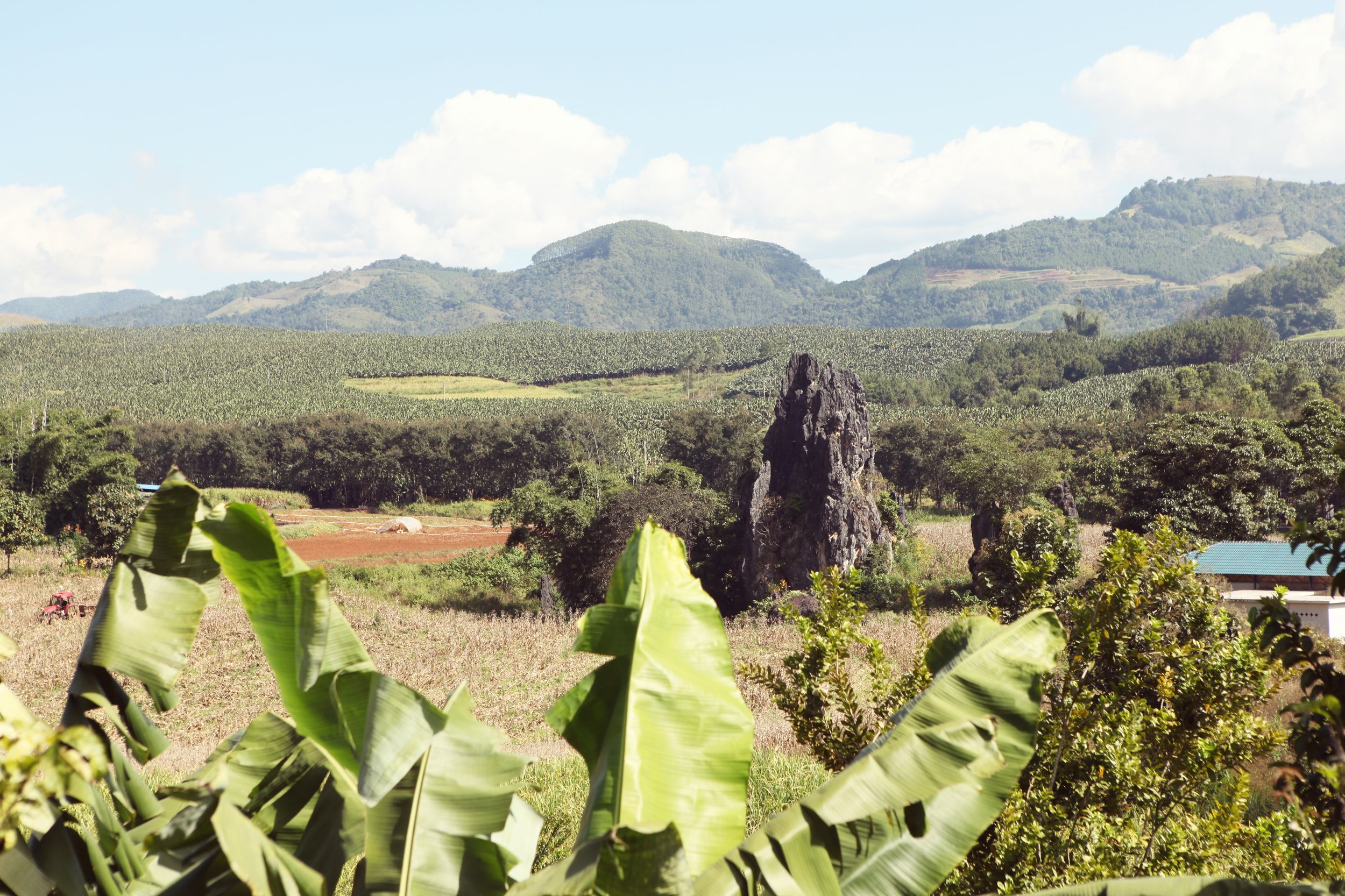 amazing view of Fuyan Farm