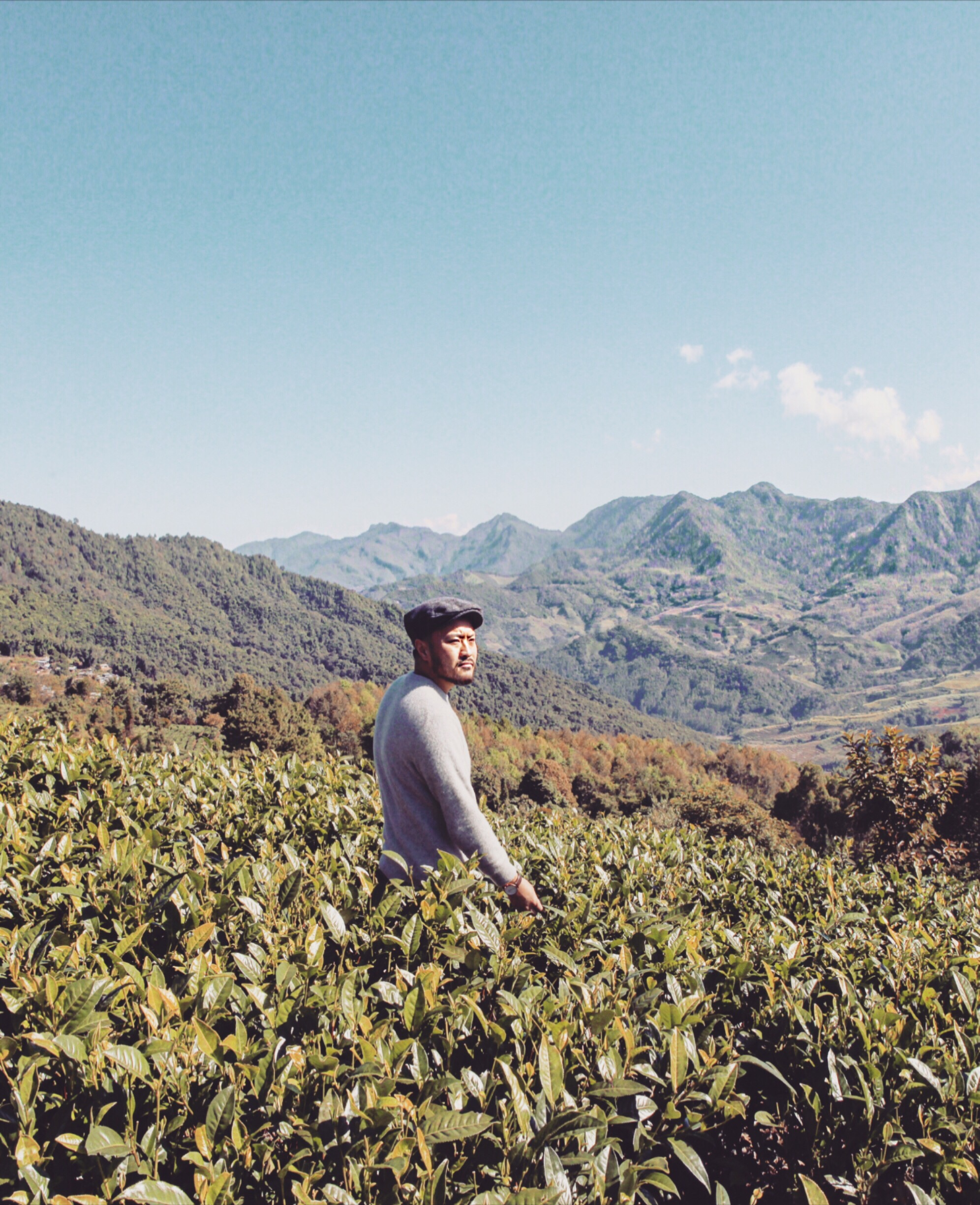 Justin and Pu'er Tea Farm on the hill