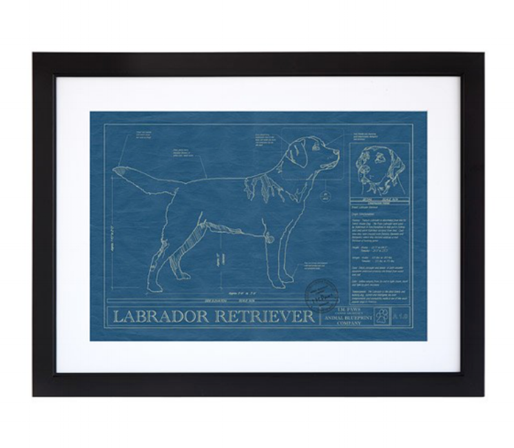 {This vintage-feeling dog blueprint is right up my alley – dogs and illustrations! From  Uncommon Goods .}