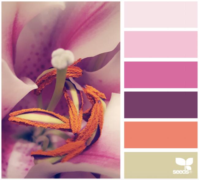 Orange Color Palette Inspiration Decorating Home Decor Interior Design