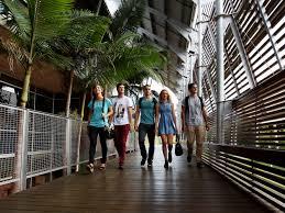 Students at the University of the Sunshine Coast
