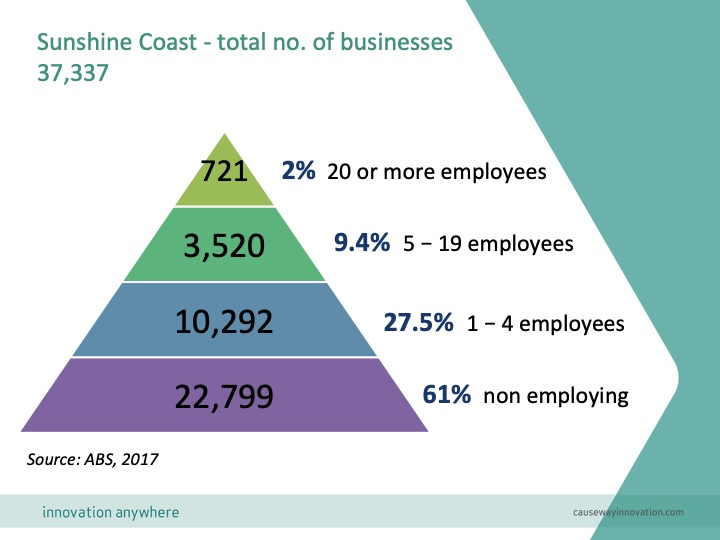 Example: SMEs by size, Sunshine Coast, Australia