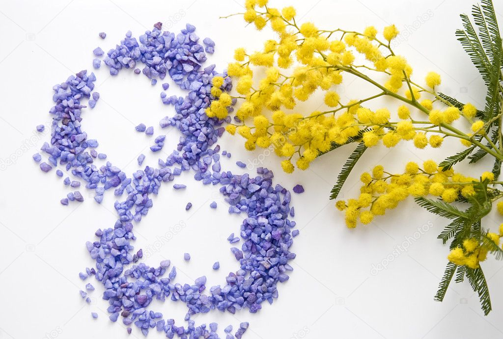 depositphotos_41649219-stock-photo-international-womens-day-mimosa-flower.jpg