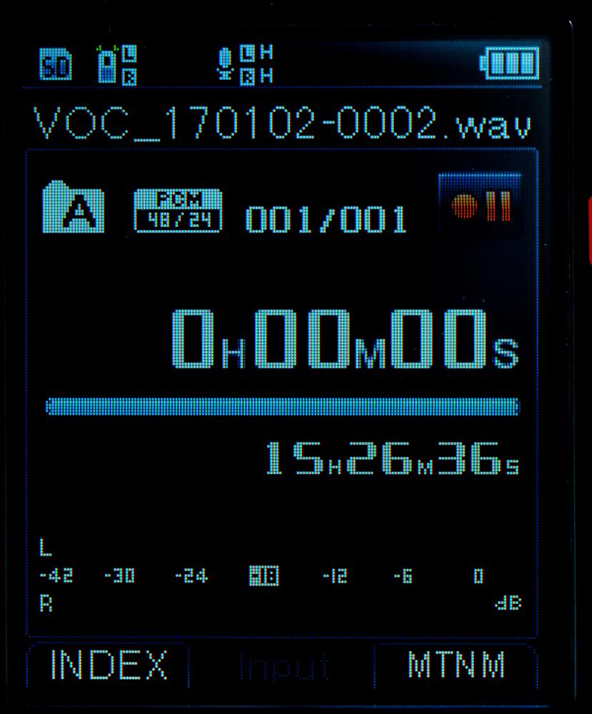 LS-100 has a color LCD.
