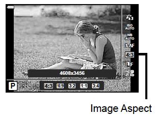 Screen Shot 2018-06-05 at 17.50.38.png