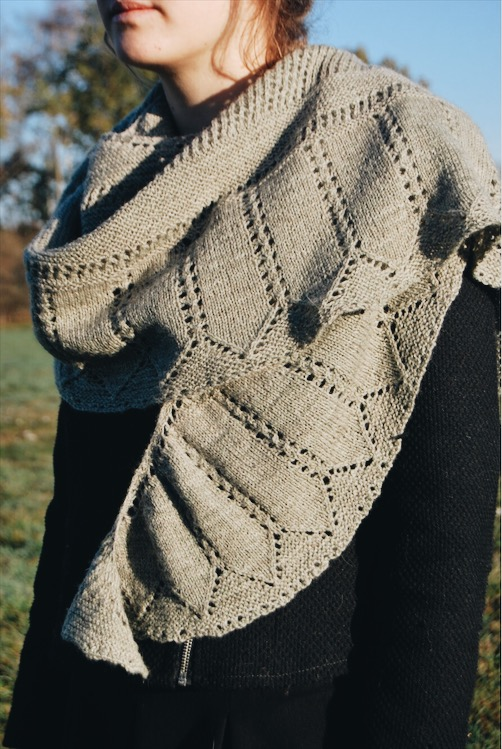 Pattern: Gizmo Shawl  Designer: Apella Knits  Yarn: BFL/ Masham 4ply (designed in this yarn)