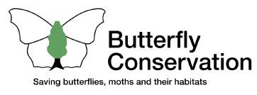 logo-butterfly.jpg