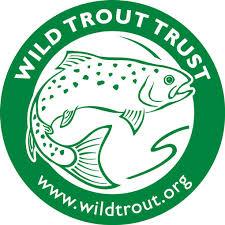 Wild Trout Trust.jpg