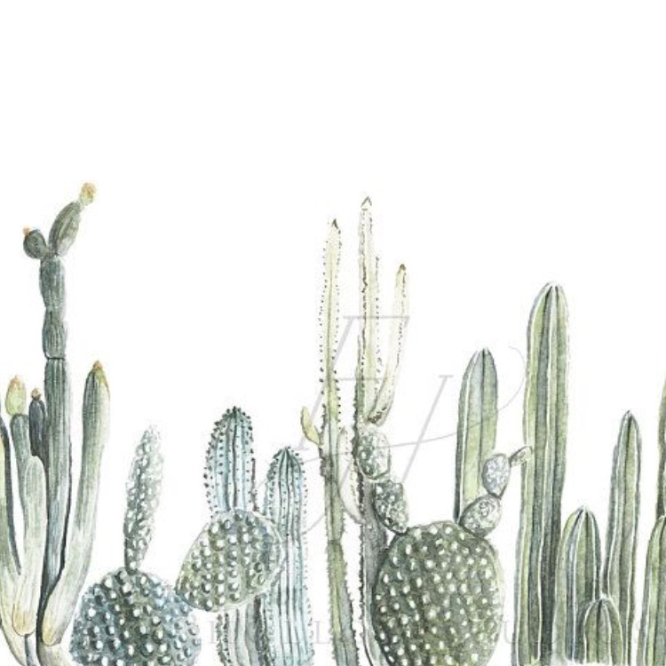 VADA_PLANTS.jpg
