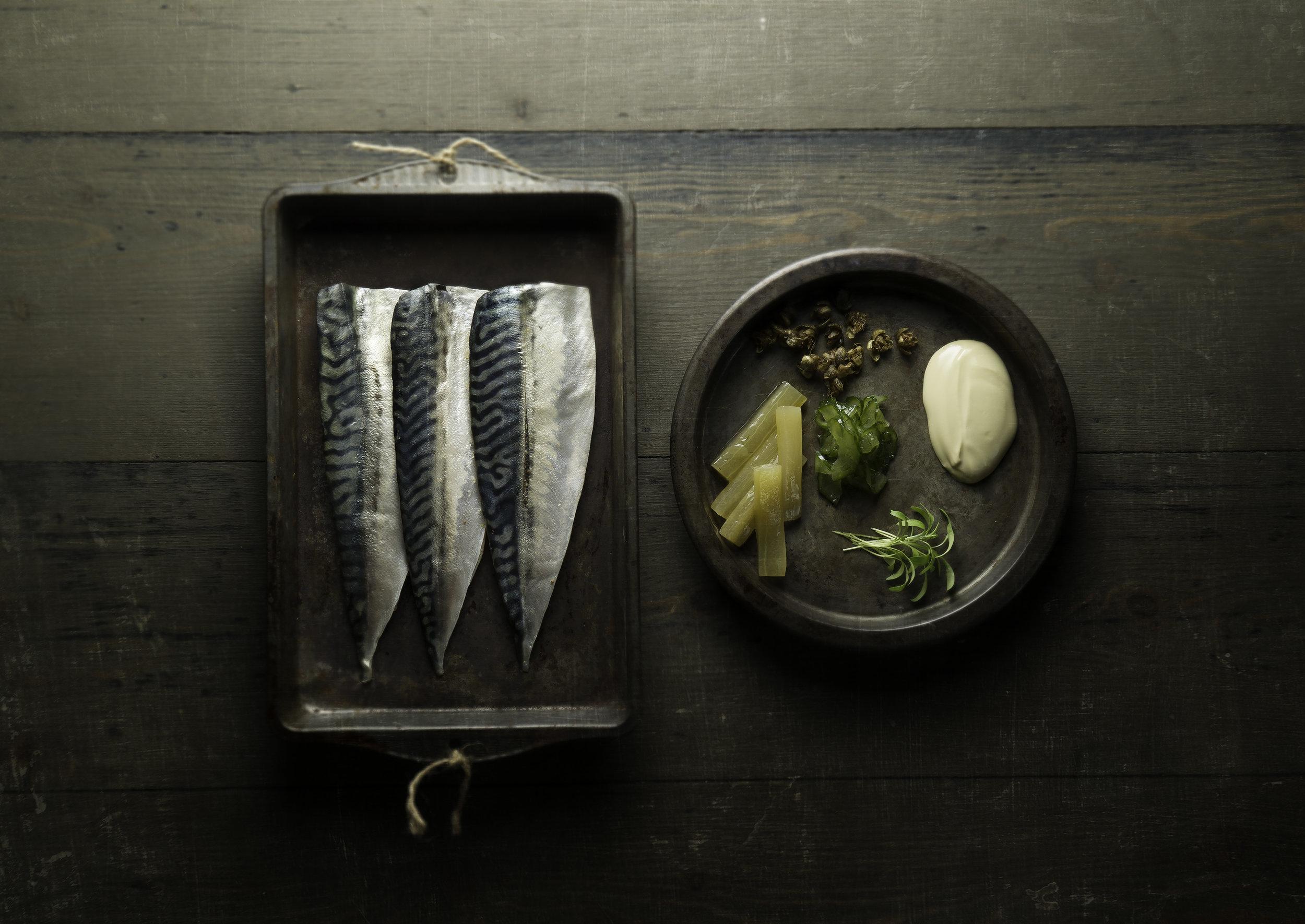 Pickled mackerel - - The Miller of Mansfield