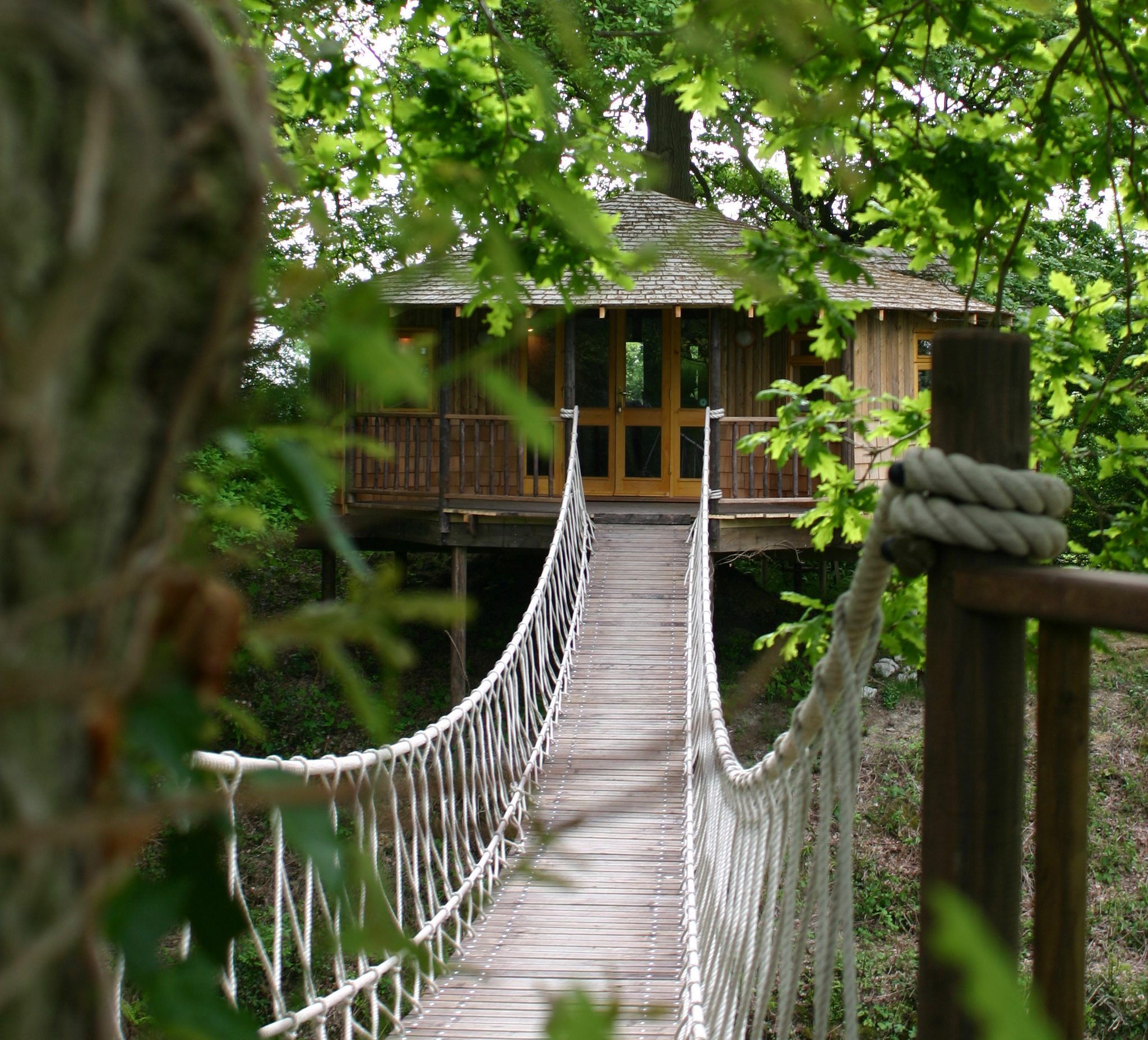 Bensfield Treehouse - - Quality Unearthed