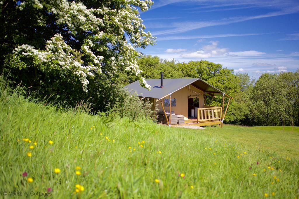 Juniper Safari Tent - - Mulberry Cottages