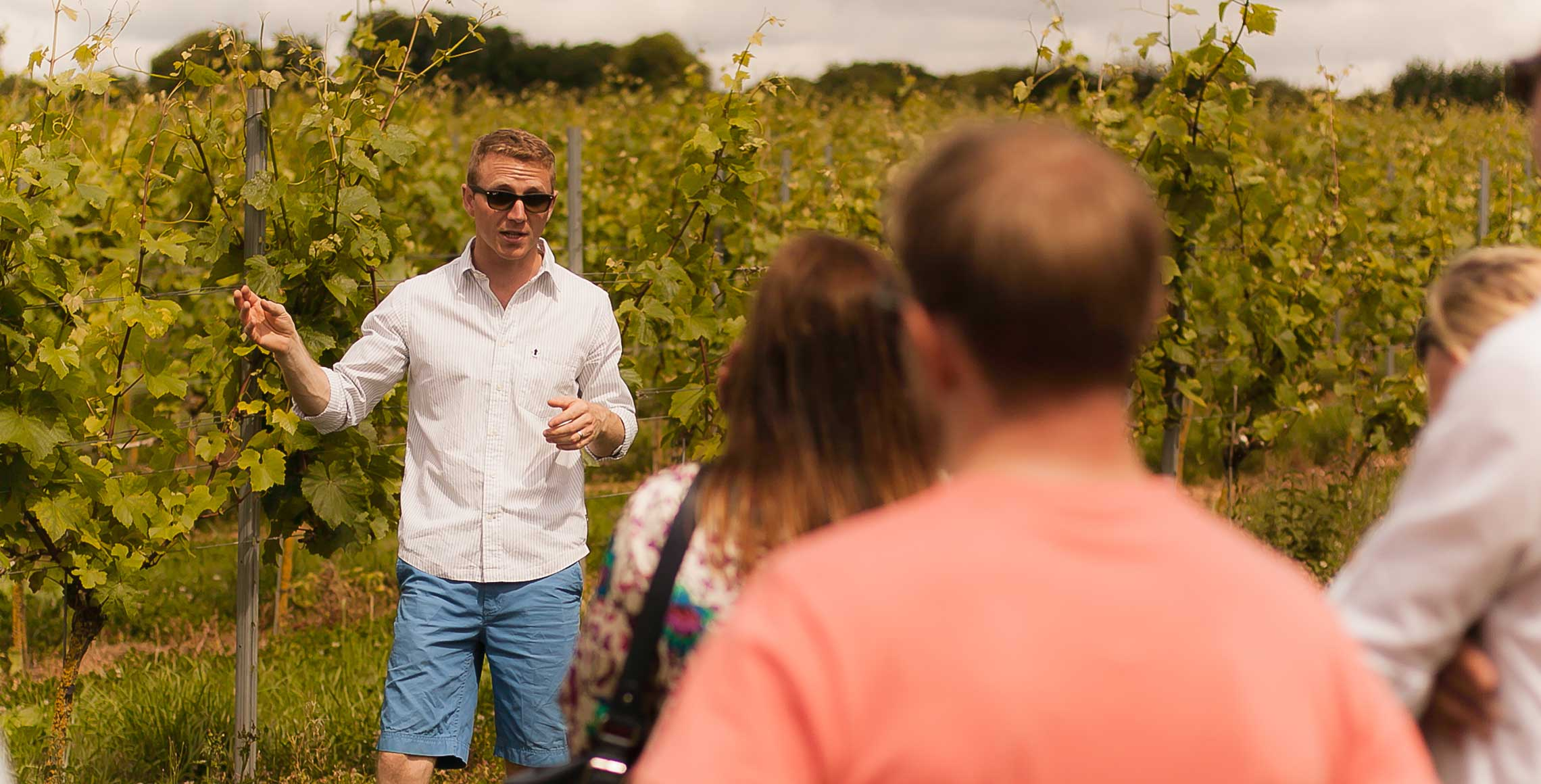 Langham Wine Estate - - WineCellarDoor.co.uk