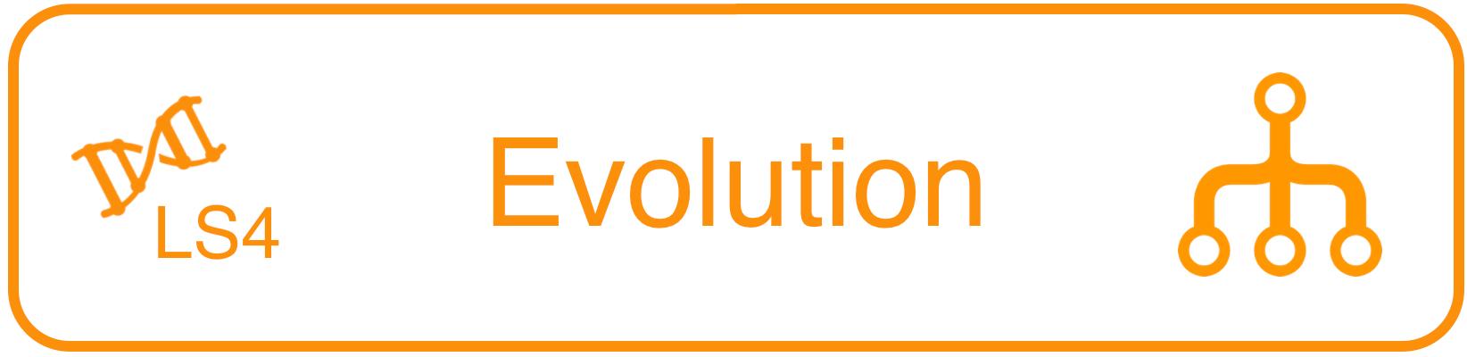 LS4__Evolution.png