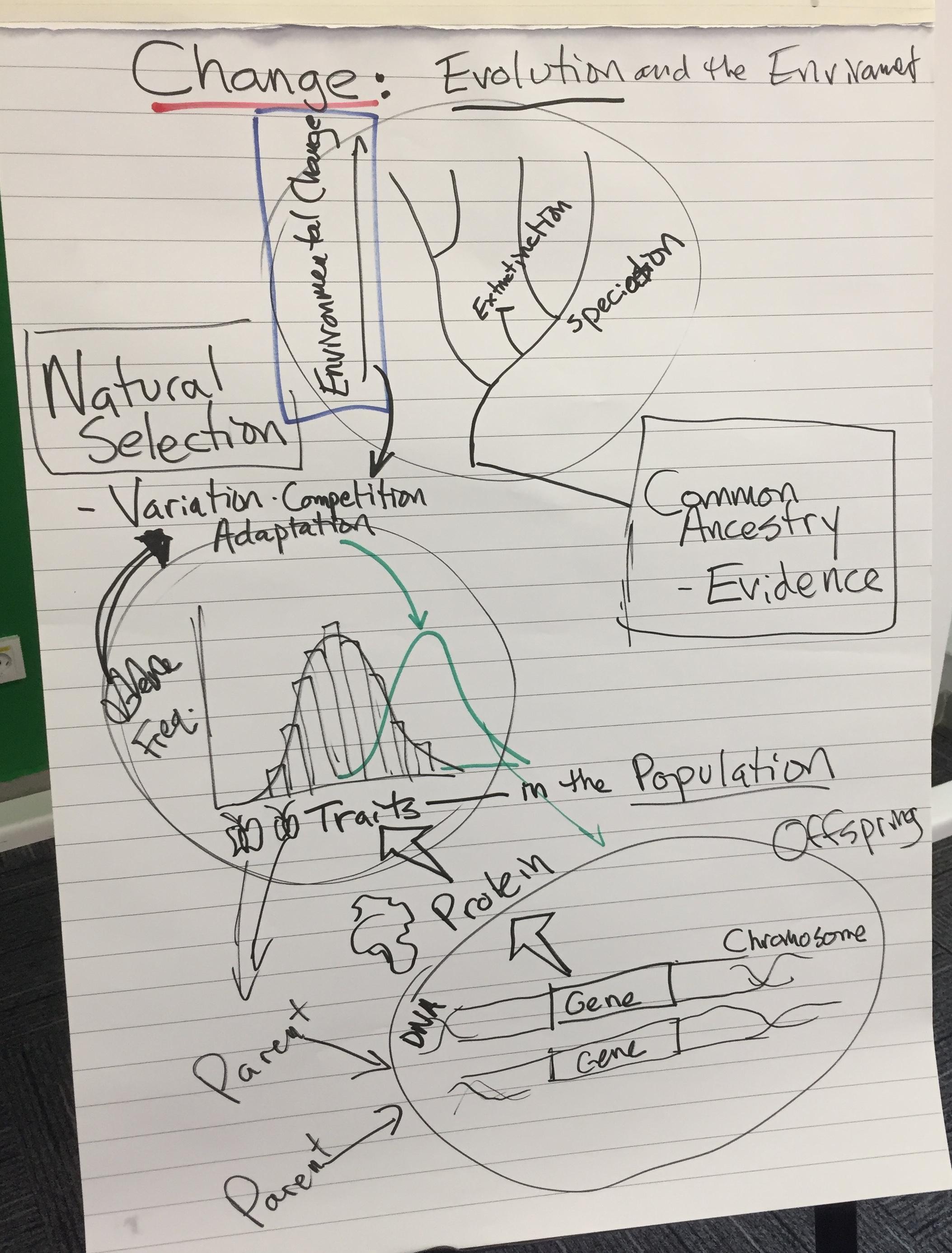 HS Natural Selection and Evolution.JPG