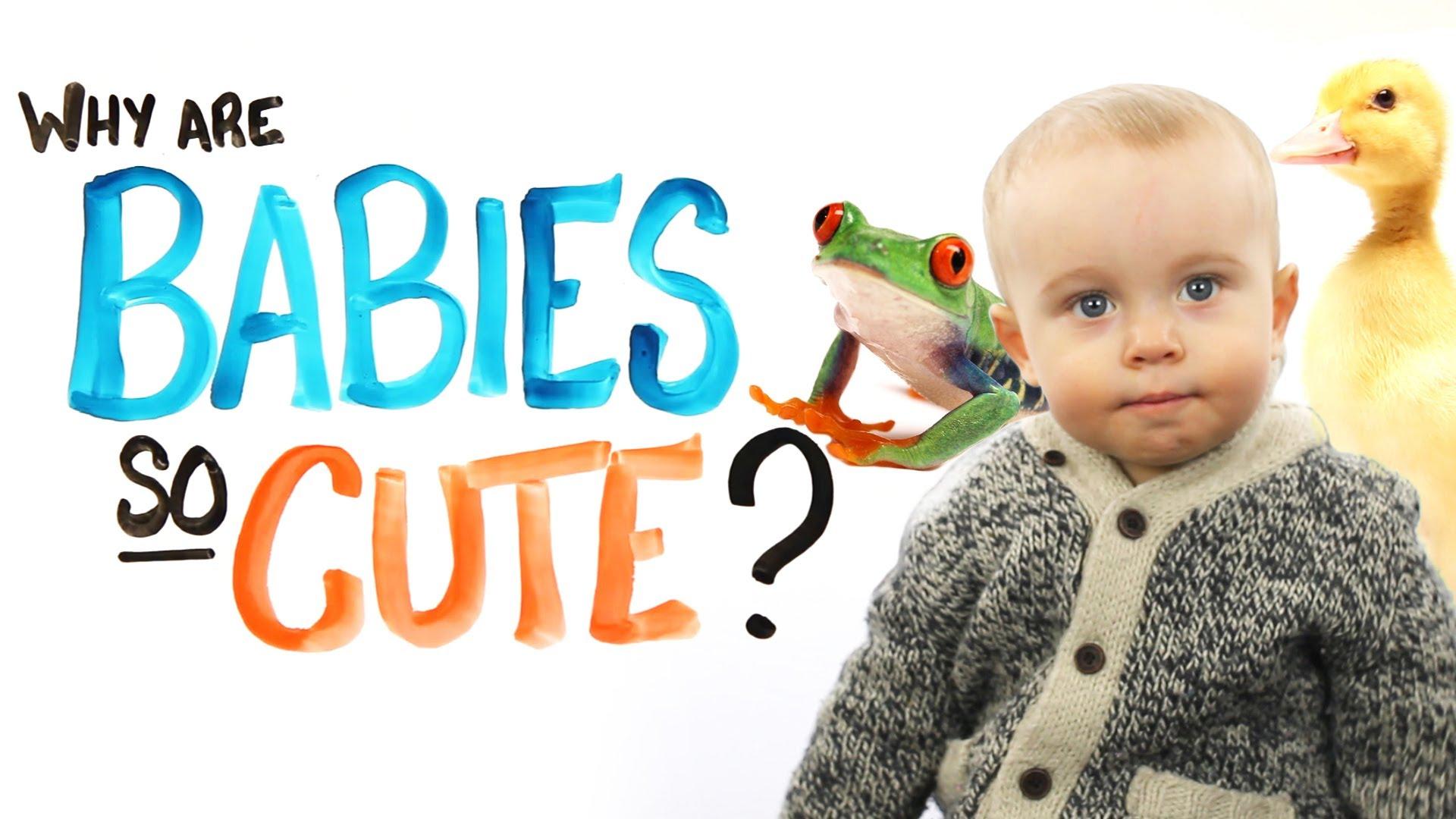 Cute Babies.jpg