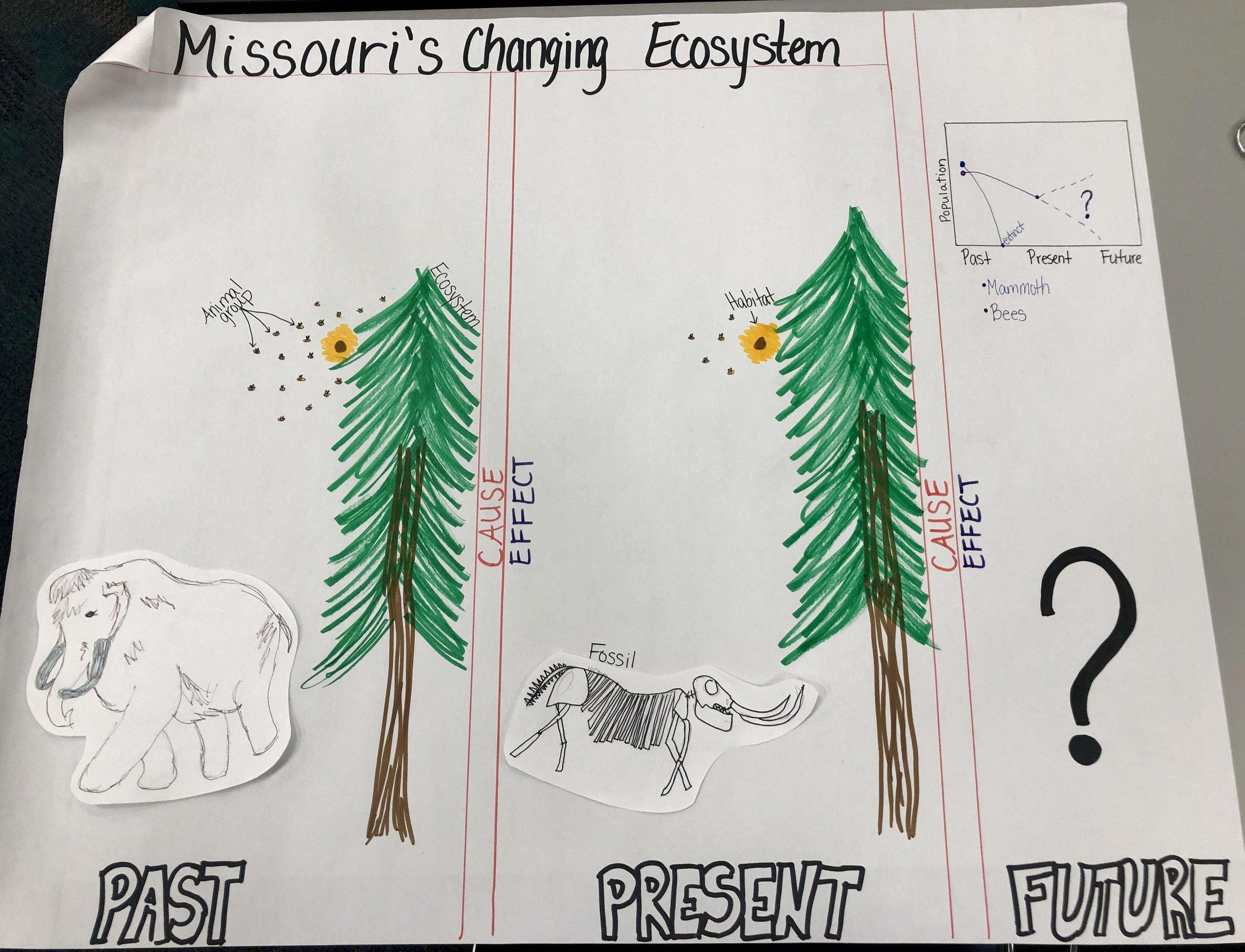 Grade 3 Ecosystem Change.jpg