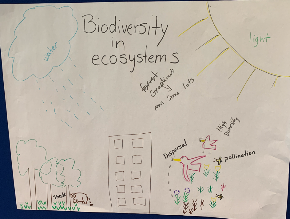 2 Biodivery and Ecosystems.png