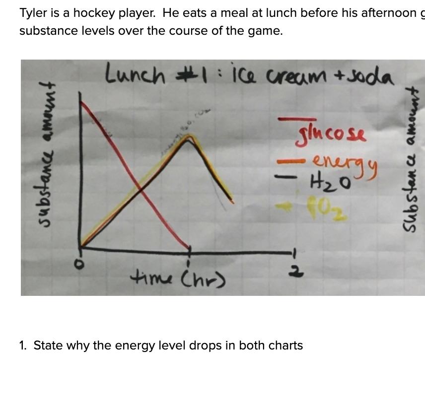 MS-LS1-7_Assessment_-_Energy_Levels_-_Google_Docs.jpg