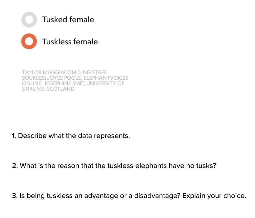 HS-LS4-3_Assessment_-_Tuskless_Elephants_II__NY__-_Google_Docs.jpg
