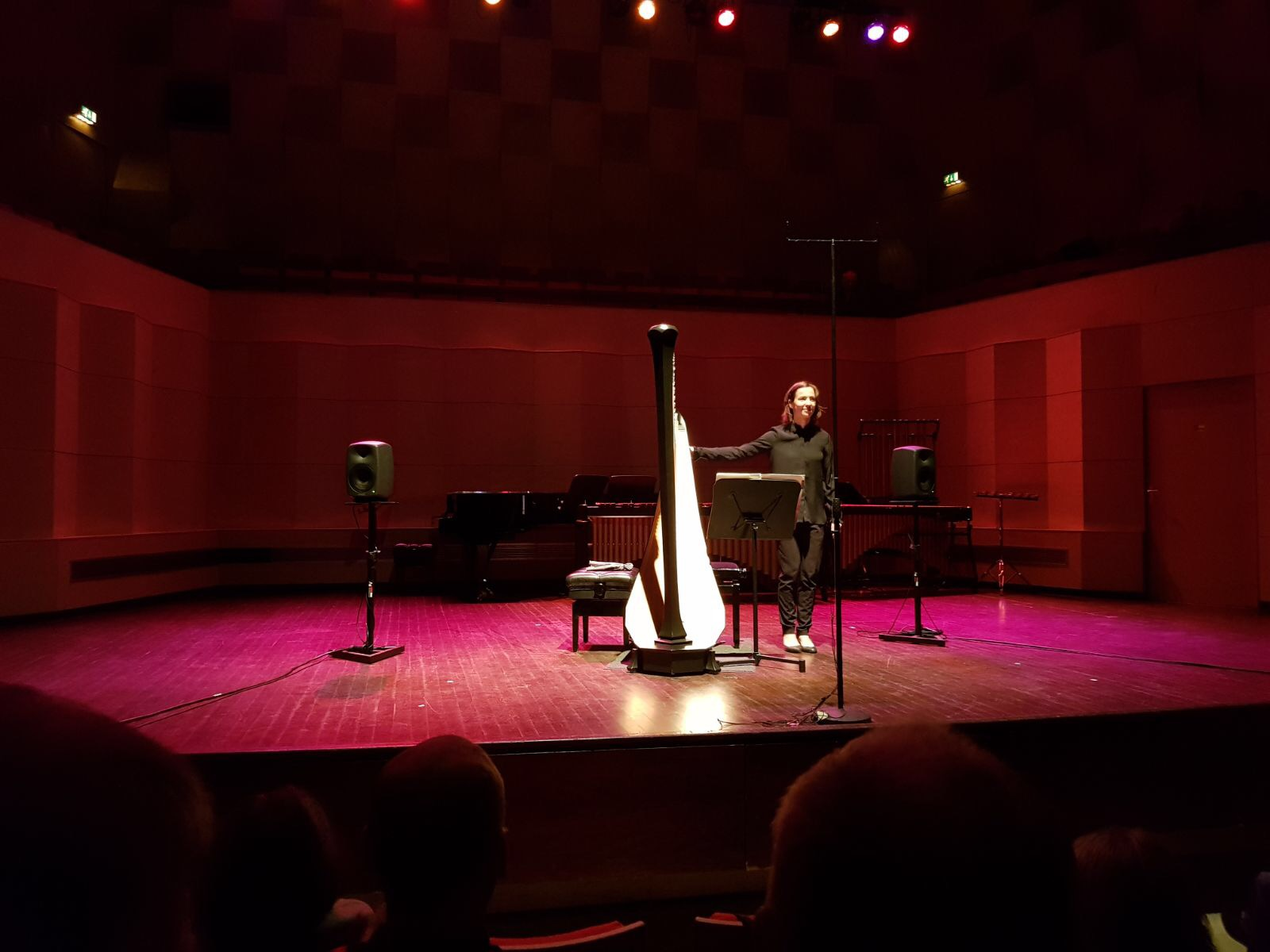 "Premiere of ""The Bell and The Maiden"" (2017) specially written for me, solo harp, by Peter-Jan Wagemans. 27th of November 2017, Jurriaanse Zaal, De Doelen."