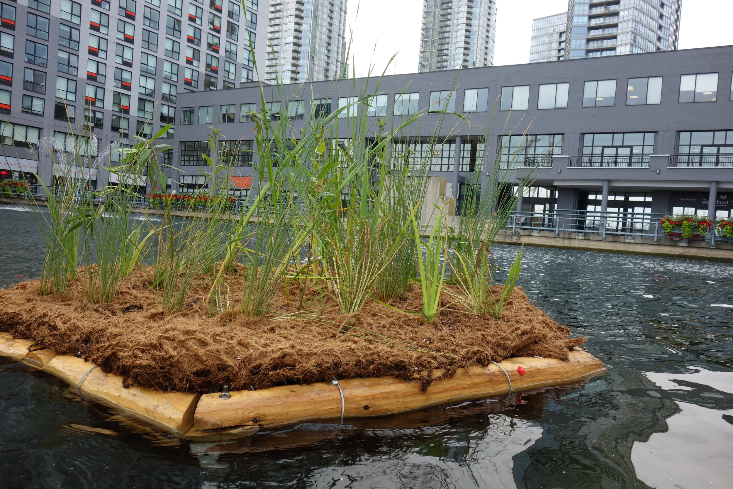 PSB Floating Gardens 011.JPG