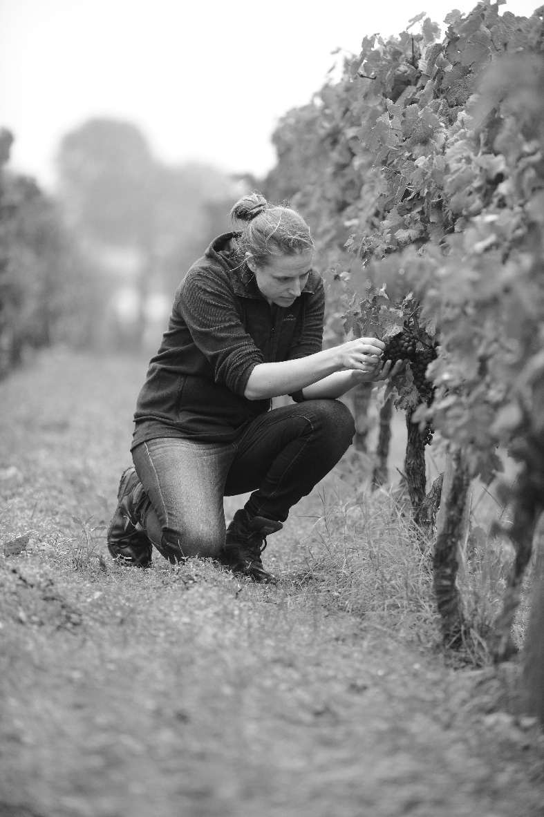 Charlotte Krajewski, winemaker.