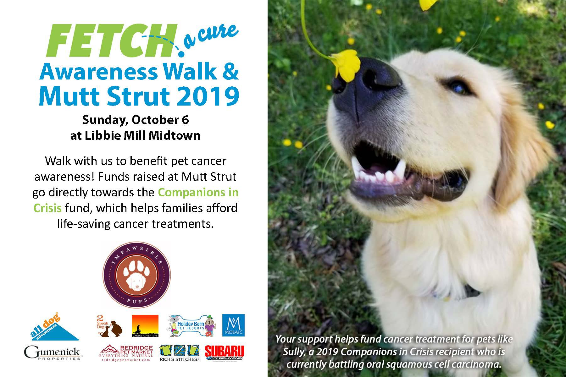 Fetch-a-Cure event poster October 6