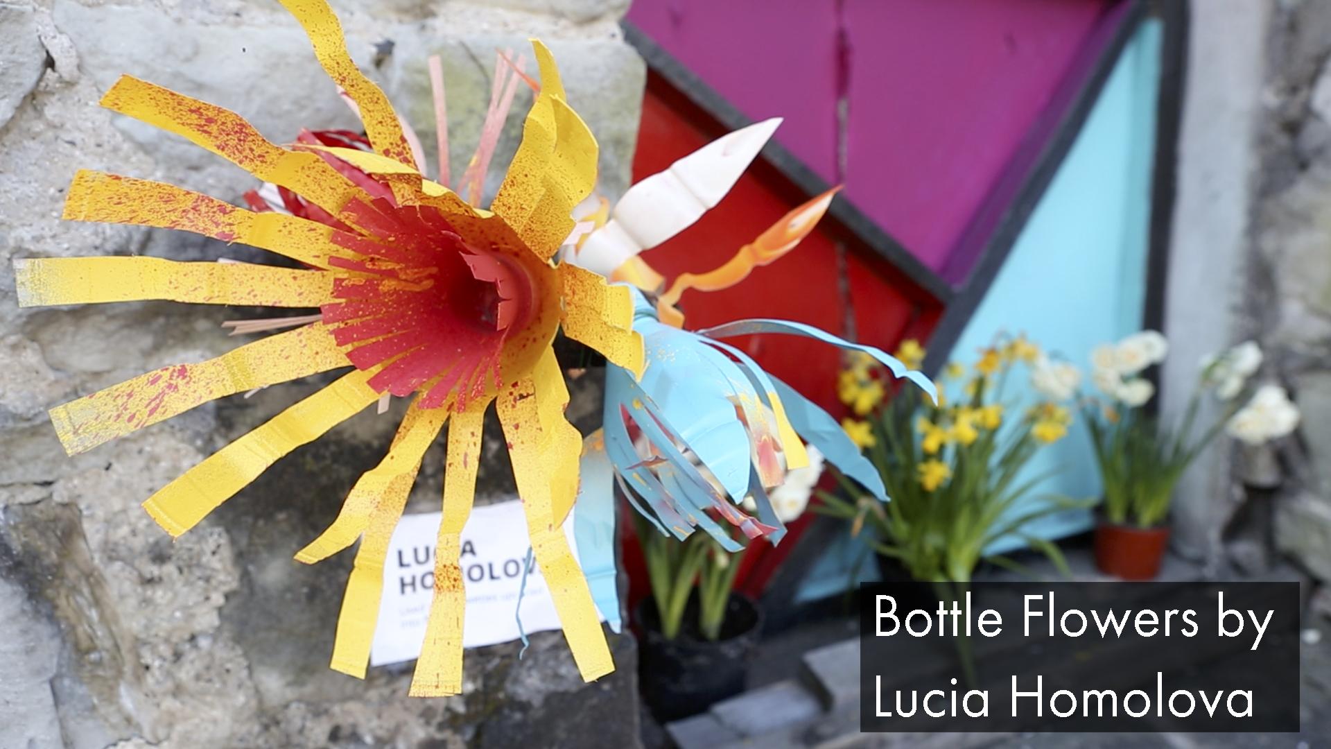 BottleFlowers_LuciaHomolova.jpg