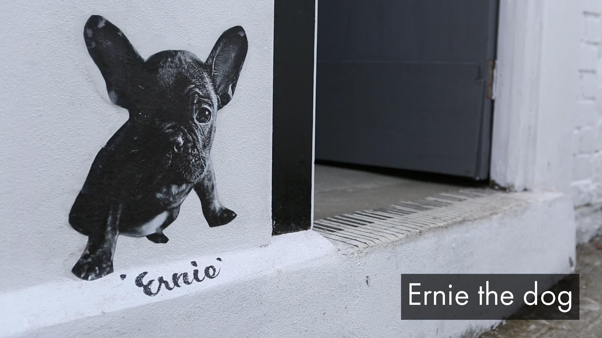 ErnietheDog.jpg