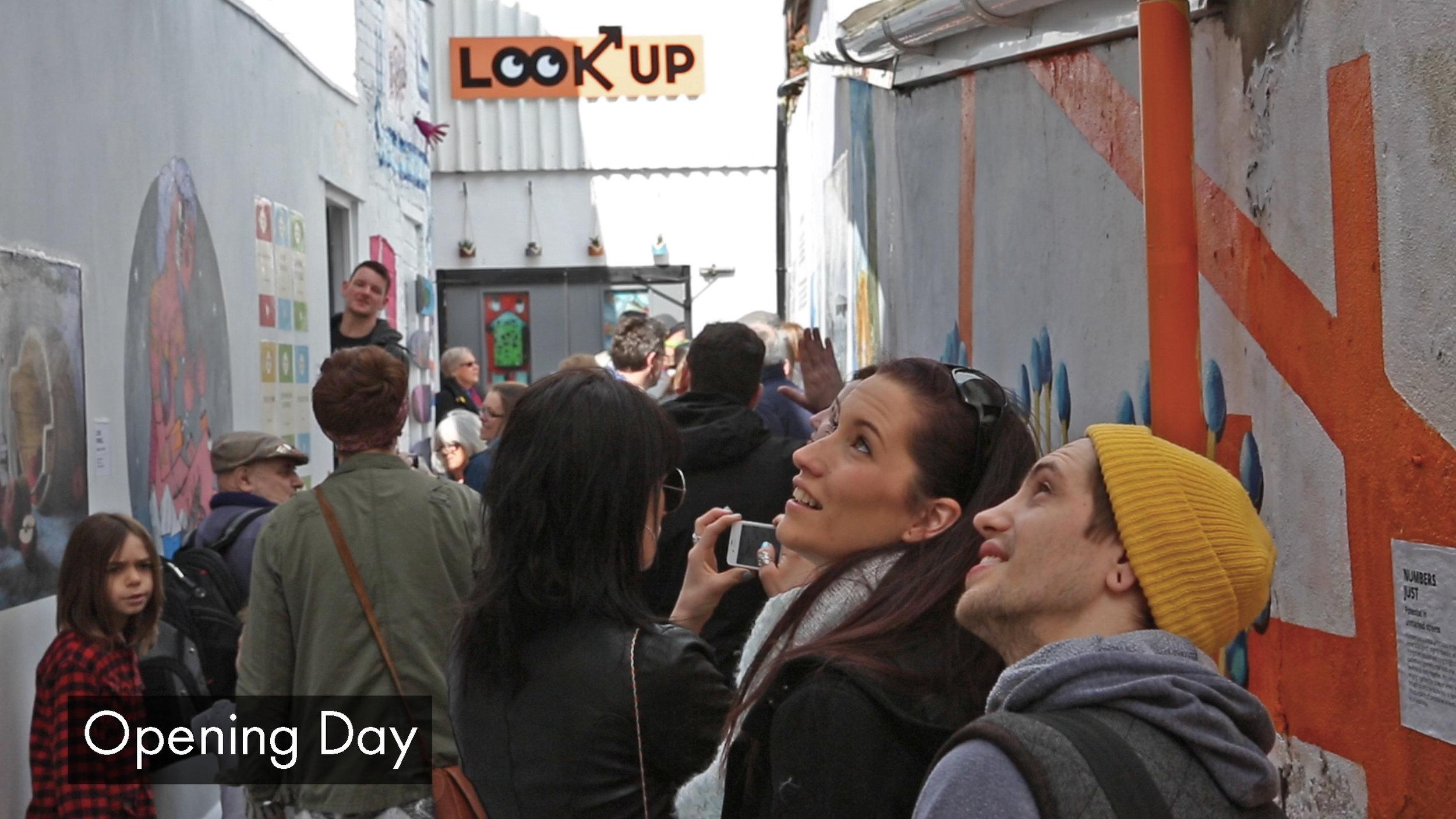 openingday_lookup.jpg