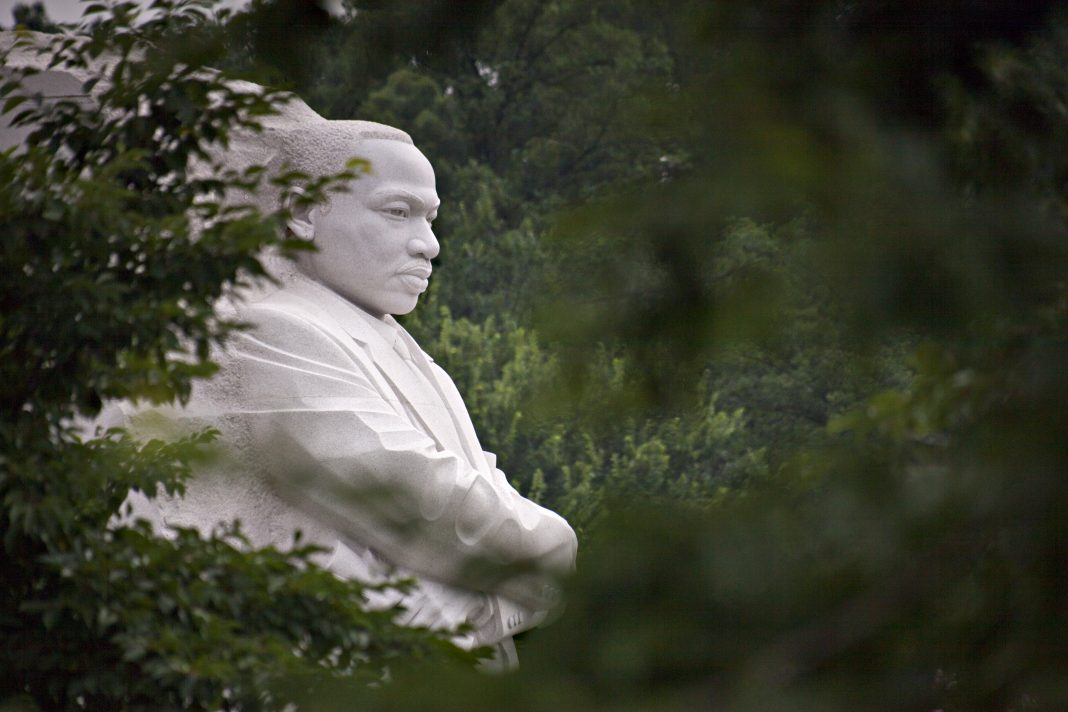 """""""EVEN IF I KNEW THAT TOMORROW THE WORLD WOULD GO TO PIECES, I WOULD STILL PLANT MY APPLE TREE."""" --Martin Luther King, Jr."""