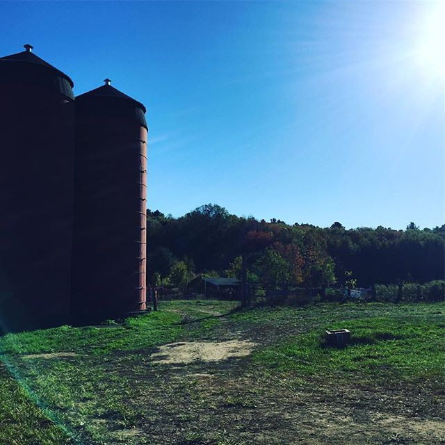 Beautiful fall afternoon for a farmer open house at #snakedenfarm!