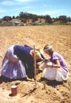 cher planting corn.jpg