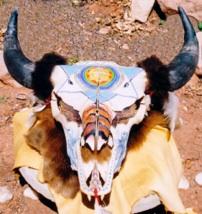 Buffalo Skull by Cher Lyn