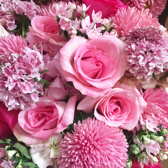 Pink Blooms - The Kissters