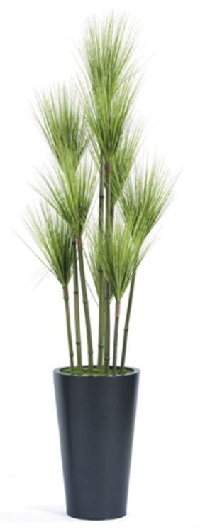 Tree Masters Inc - T95B6-33MB-MM - $259.JPG