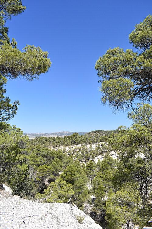 landscape around Joya: AiR