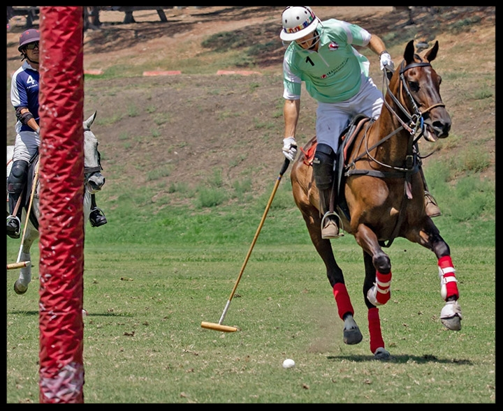 Chuck and his beloved polo…scoring a goal too!
