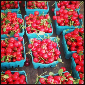 elusive summer sour cherries at the farmer's market