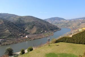 Douro River as seen from Quinta da Barca winery