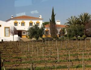J Portugal Ramos Winery in Alentejo, courtesy Worldwine Marketing
