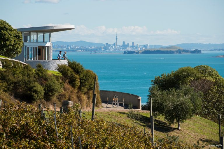 Waiheke-Vineyard-photo-credit-Visit-New-Zealand-2-768x512.jpg